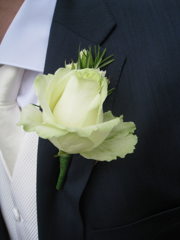 Green cream rose bud against an elegant navy suit