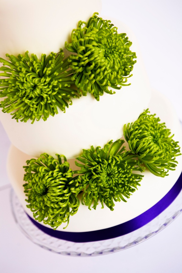 Green chrysanthemum blocked cake